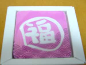 20090526fukumarutaoru
