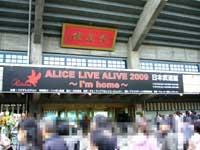 20091114alice002
