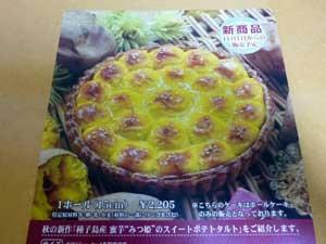 20101020_sisyokukai1