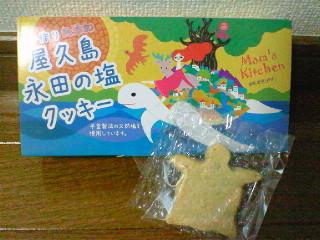 屋久島 永田の塩クッキー